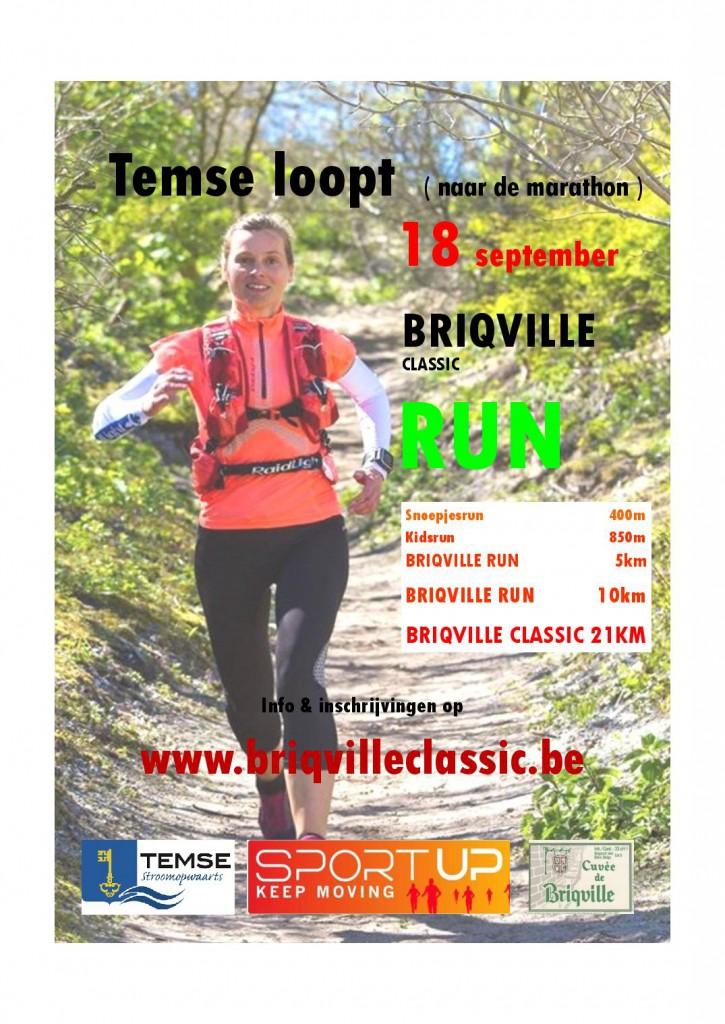 briqville-flyer