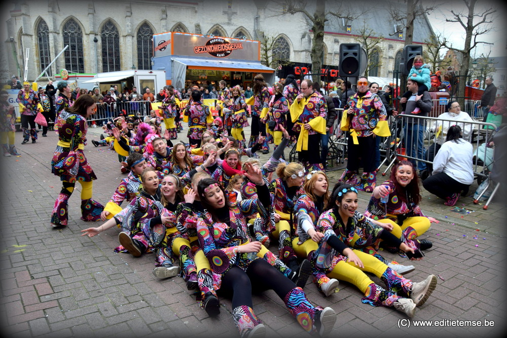 Carnavalstoet Temse 2017 (1)